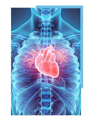 //dr-beckenbauer.de/wp-content/uploads/2018/06/cpm-muenchen-praxis-dr-beckenbauer-kardiologie.jpg